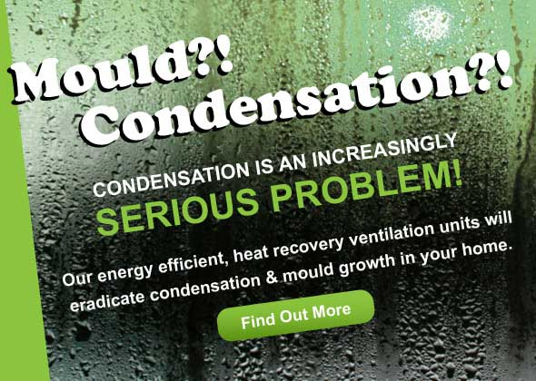 Mould and Condensation - Damp problem advert